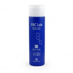 шампунь для придания объема (для жирной кожи головы) momotani ebc lab scalp clear shampoo